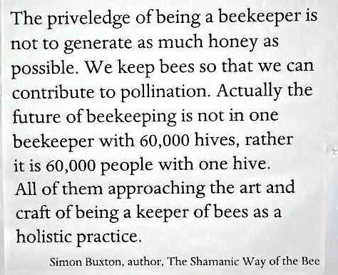 quote from shamanic beek